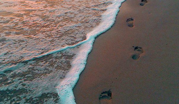 Digitale fodspor